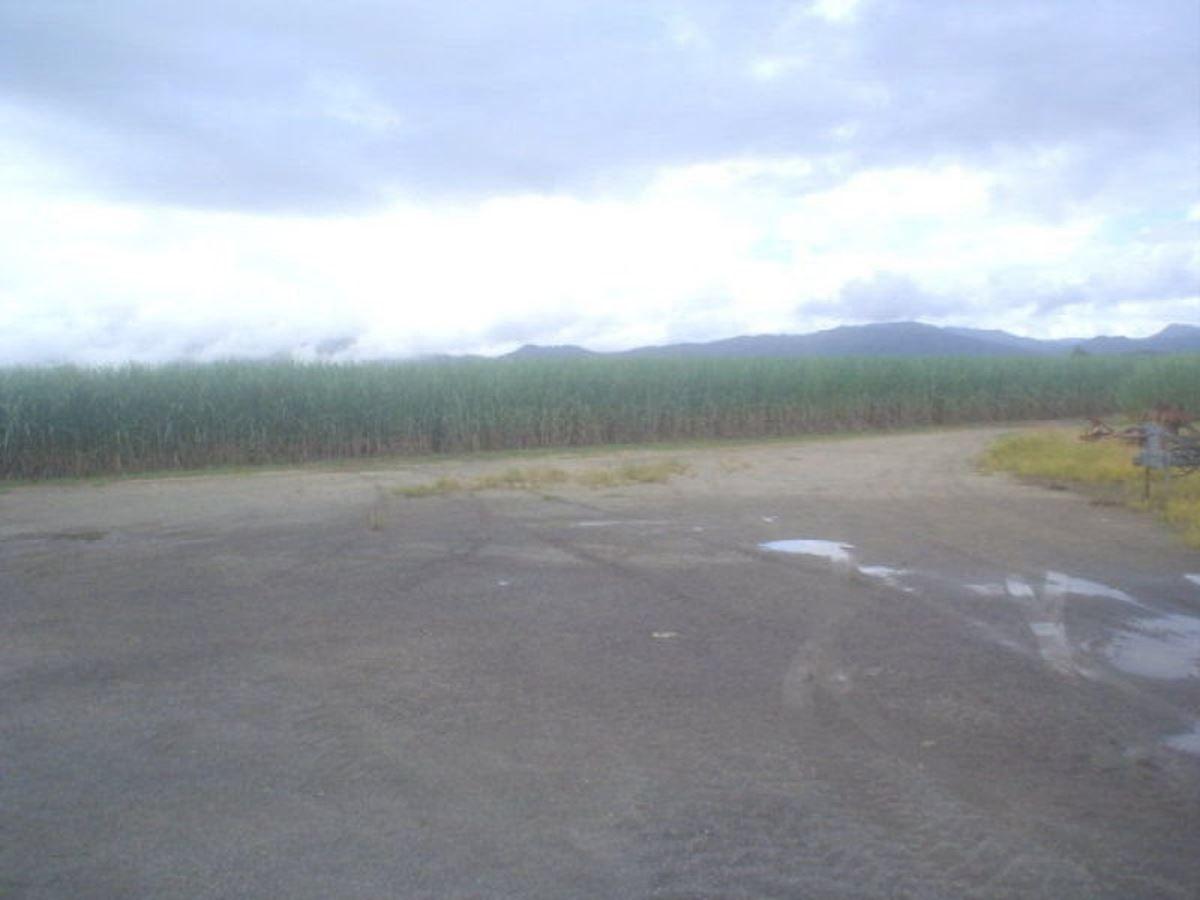 Silkwood QLD 4856, Image 2