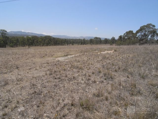Woodland Ridge Estate, Muscle Creek NSW 2333, Image 2