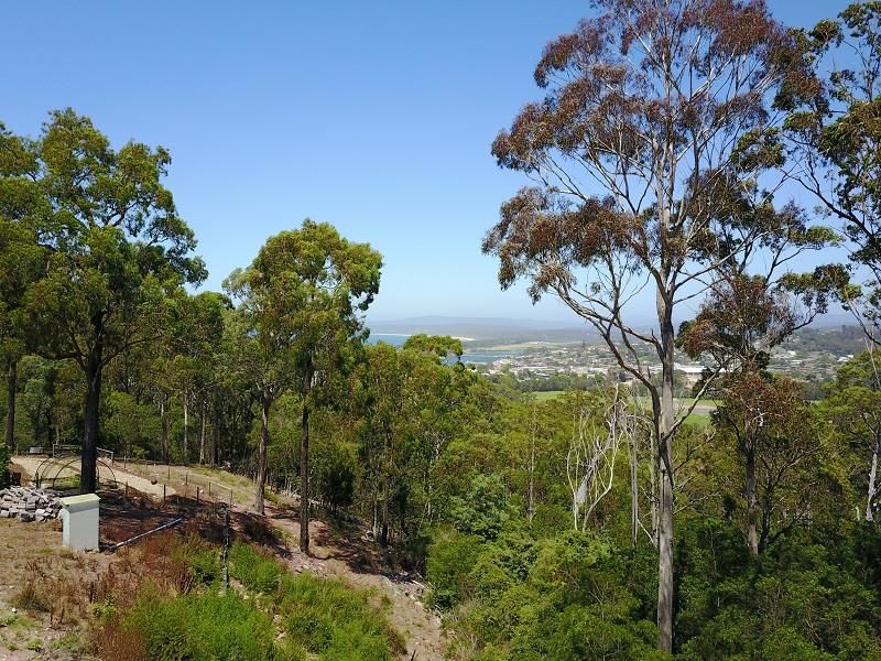 24 Camilla Court, Mirador NSW 2548, Image 1