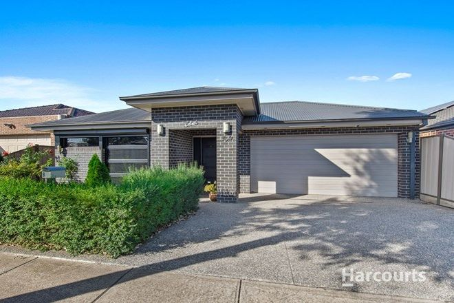 Picture of 8 Naomi Street, BURNSIDE HEIGHTS VIC 3023