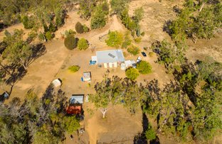 Picture of 203 Paddy Creek Rd, Condamine Farms QLD 4357