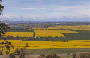 """Little Range"" Cusack Road, Galong NSW 2585"