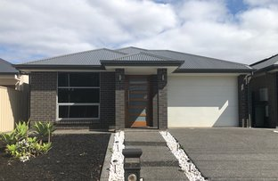 Picture of 24a GALWAY AVENUE, North Plympton SA 5037