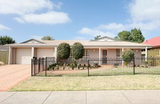 Picture of 9 Palamountain Avenue, Greenwith SA 5125