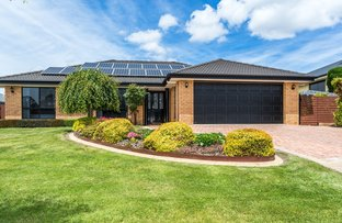 Picture of 17 Holyman Drive, Prospect Vale TAS 7250