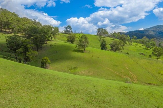 Picture of TOMS CREEK NSW 2446
