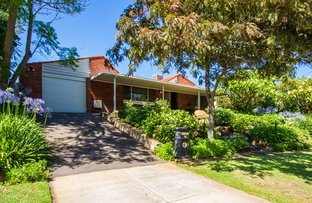 Picture of 38 Lorraine Street, Carine WA 6020