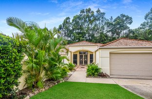 Picture of 11 Forest Ridge Circuit, Peregian Springs QLD 4573