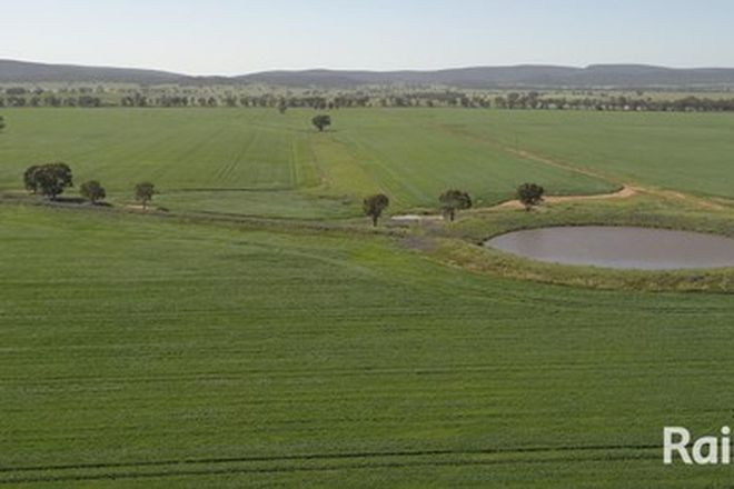 Picture of . Newell Hwy, PARKES NSW 2870