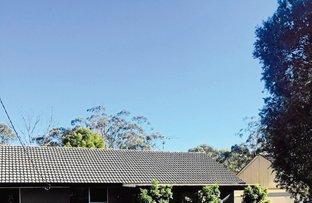 28 Bowen, Branxton NSW 2335
