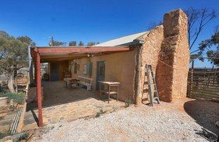 Picture of 769 Halfway House Road, Sandleton SA 5356