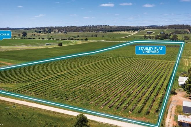 Picture of Stanley Flat & Noble Road Vineyards, Horrocks Highway, STANLEY FLAT SA 5453