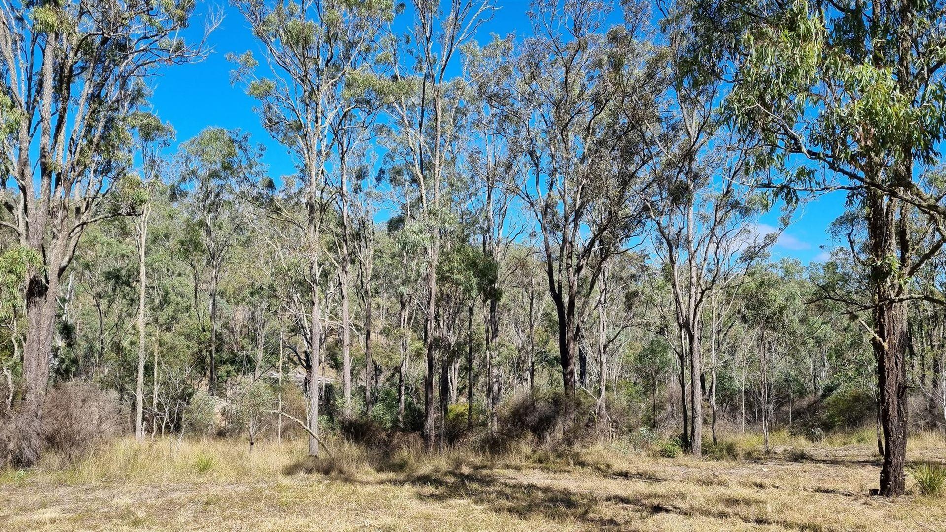 Lot 389 East Cooyar Road, Cooyar QLD 4402, Image 1