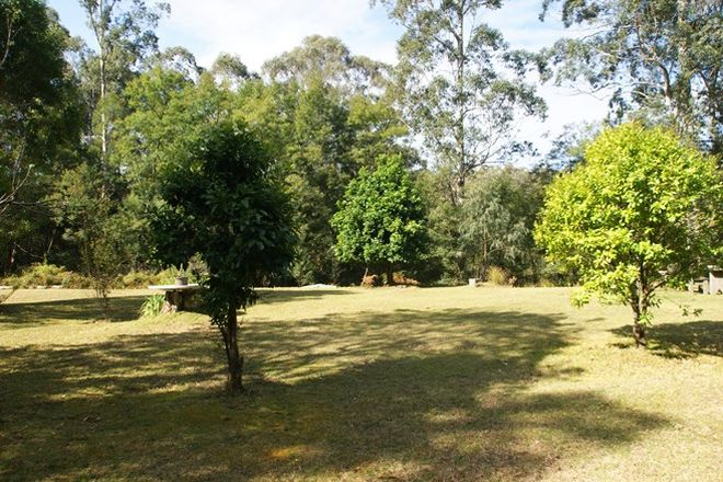 Picture of 406 Backhouses Forest Road, MOGOOD NSW 2538