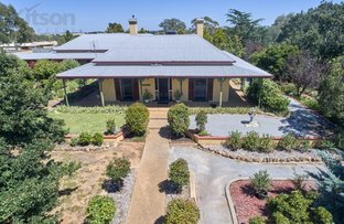 Picture of 58 Kemp Street, Junee NSW 2663