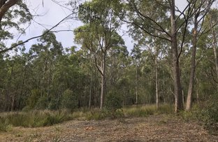 Picture of Lot 38 Bournda Park Way, Wallagoot NSW 2550