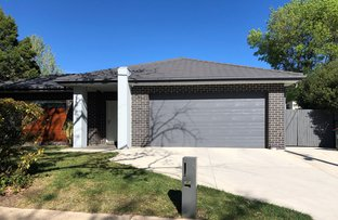 Picture of 4 Shortland Cres, Ainslie ACT 2602