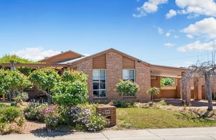 Picture of 29 Balmoral Drive, Golden Square VIC 3555
