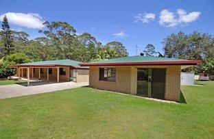 Picture of 16 Preston  Road, Diddillibah QLD 4559