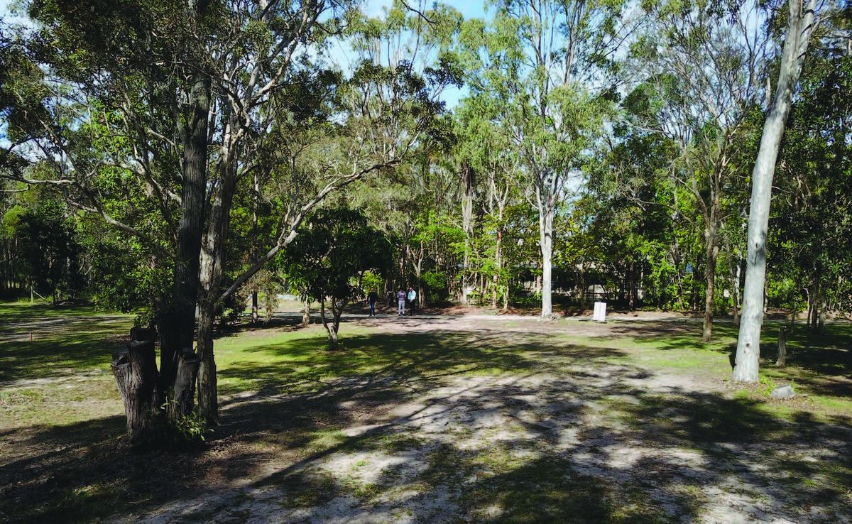 14C Burralong Drive, Wondunna QLD 4655, Image 1
