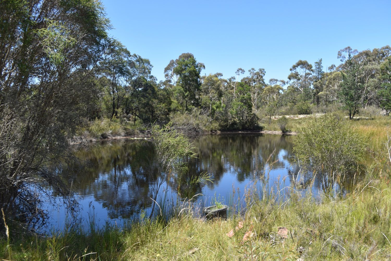 123 Oallen Road, Oallen NSW 2622, Image 0