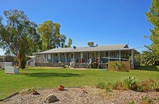 Picture of 39 Dalton Street, Boggabri NSW 2382