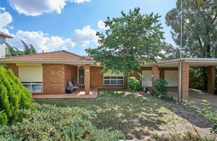 24 McCoullough Drive, Tolland NSW 2650