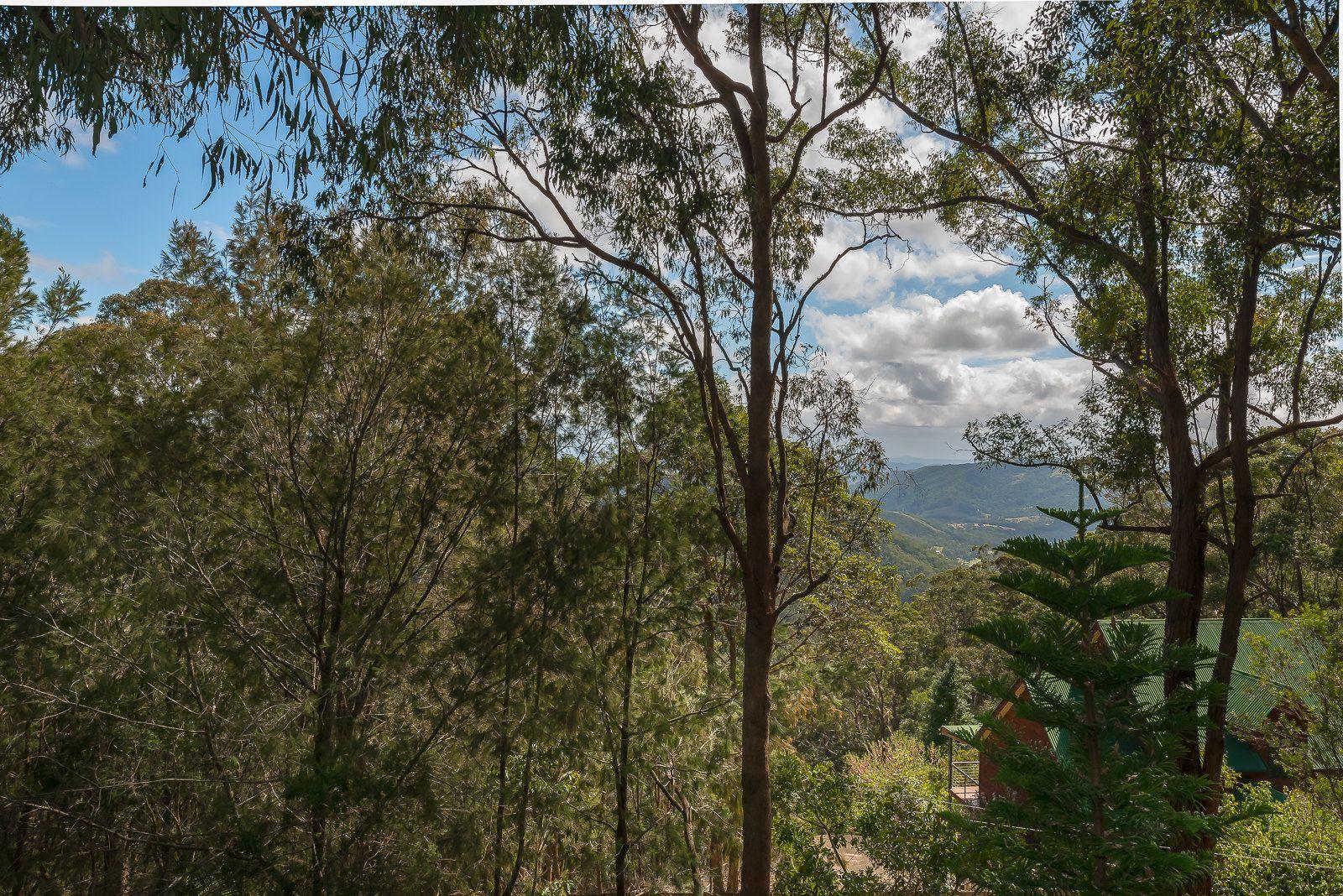 1718 Tamborine-Oxenford Road, Tamborine Mountain QLD 4272, Image 1