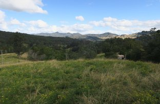 Picture of 3718 Taylors Arm Rd, Burrapine NSW 2447