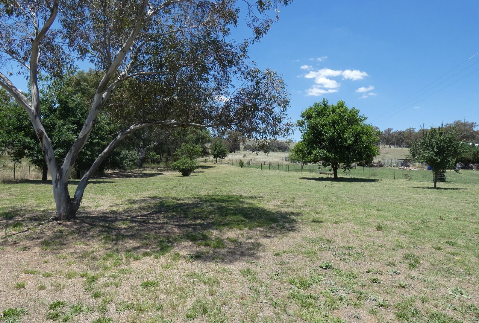 2246 Murringo Road, Murringo NSW 2586, Image 2