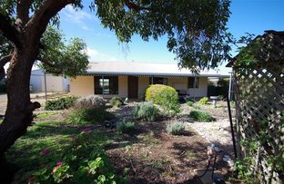 Picture of 60 Maitland Road, Minlaton SA 5575