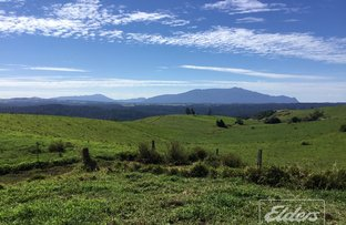 Picture of Lot 2 Woolleys Road, Millaa Millaa QLD 4886