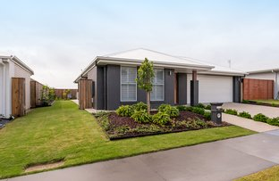 Picture of 28 Jacana Avenue, Bli Bli QLD 4560