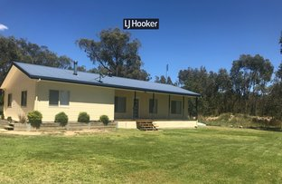 Picture of 311 Old Stannifer Road, Inverell NSW 2360