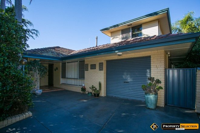 Picture of 24 Jervois Street, DIANELLA WA 6059