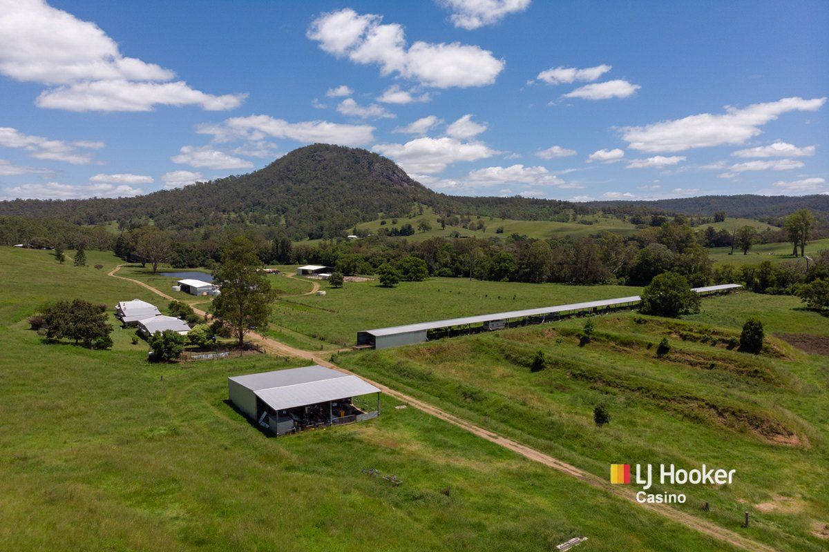 520 Capeen Creek Road, Old Bonalbo NSW 2469, Image 0
