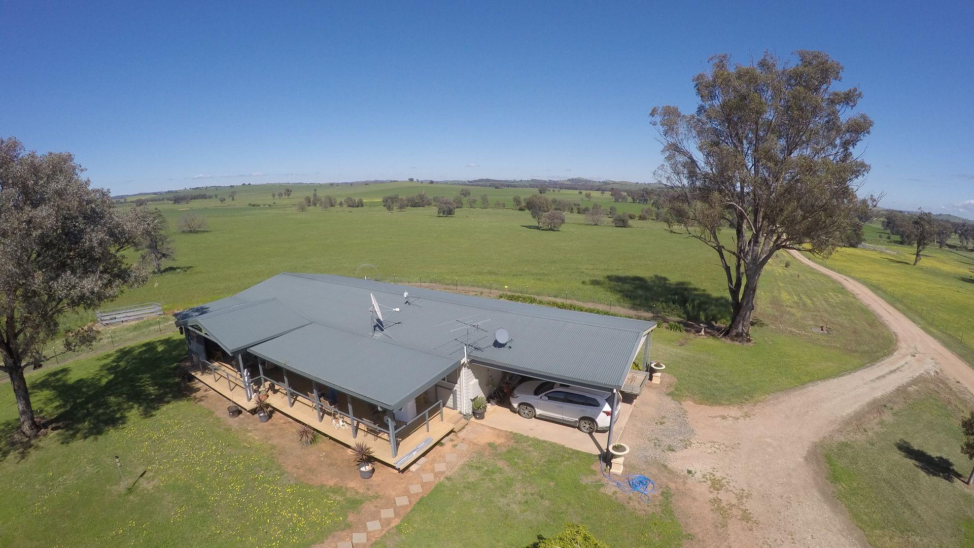 Borambola NSW 2650, Image 2