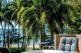 Picture of 5/65 WILLIAMS ESPLANADE, Palm Cove QLD 4879