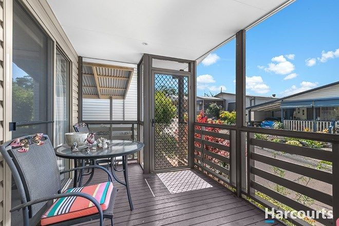Picture of 194/51 Kamilaroo Avenue, LAKE MUNMORAH NSW 2259