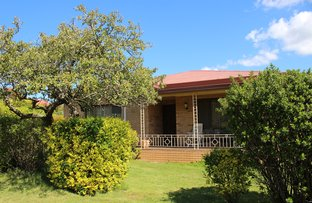 Picture of 69 Albury Street, Tumbarumba NSW 2653