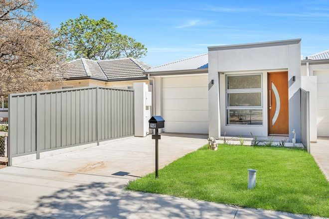 Picture of 24B Parsons Street, OAKLANDS PARK SA 5046