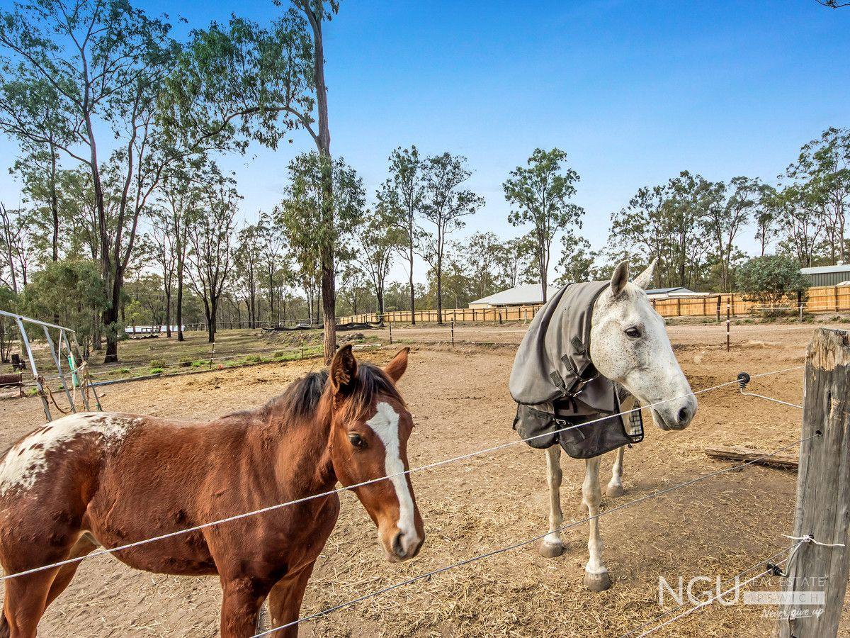 11a Laurette Drive, Glenore Grove QLD 4342, Image 0