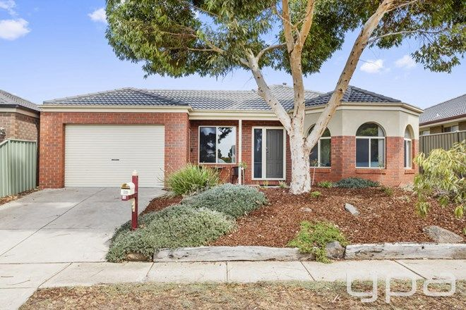 Picture of 28 Jade Crescent, WYNDHAM VALE VIC 3024