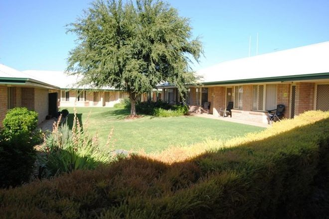 Picture of 115 Clifton Boulevard, GRIFFITH NSW 2680