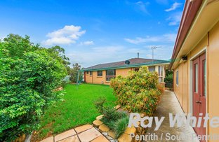 Picture of 1 Boree Place, Werrington Downs NSW 2747