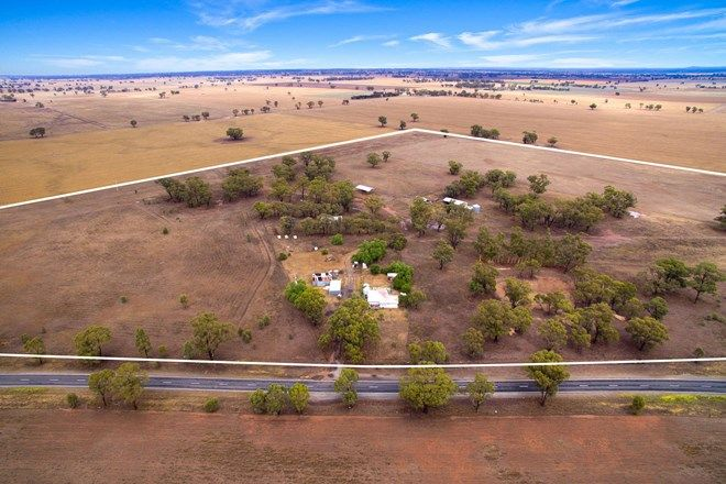 Picture of 2607 Loddon Valley Highway, CAMPBELLS FOREST VIC 3556