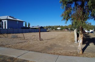 Picture of 44 Old Gunnedah Road, Narrabri NSW 2390