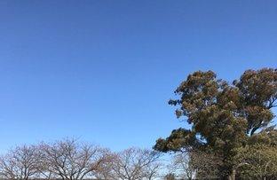 Temora NSW 2666