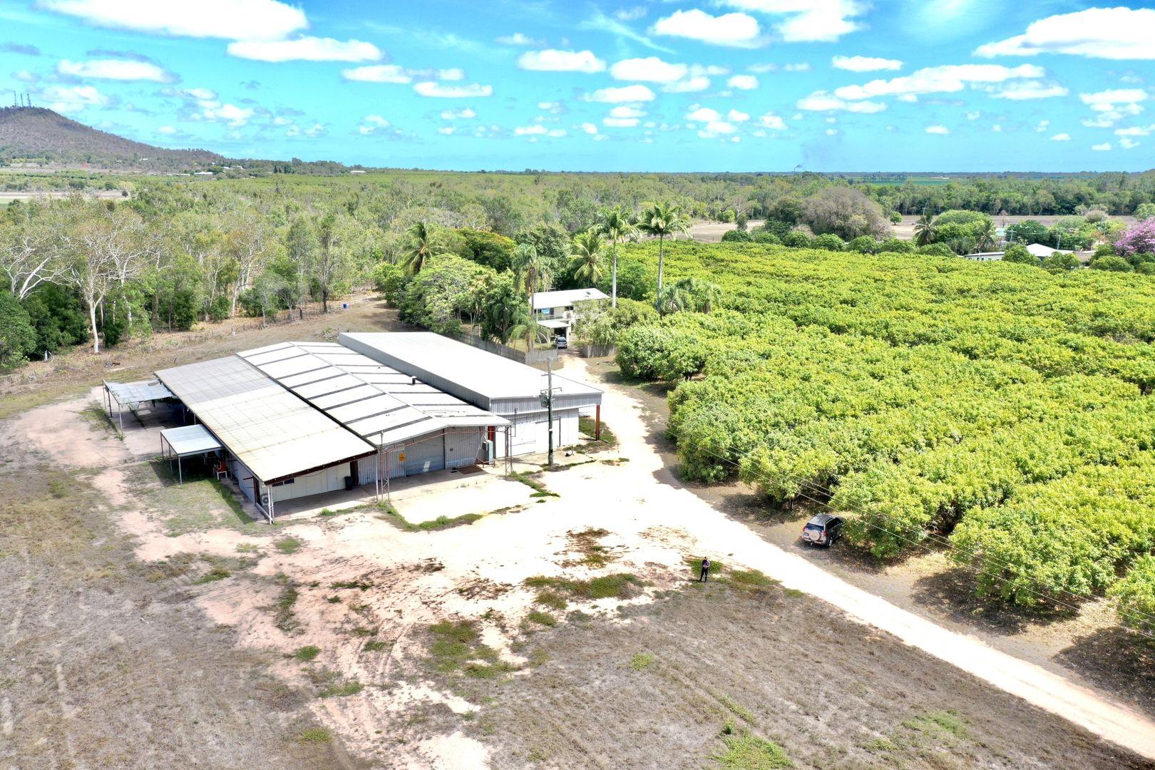 892 Ayr Dalbeg Road, Mount Kelly QLD 4807, Image 2