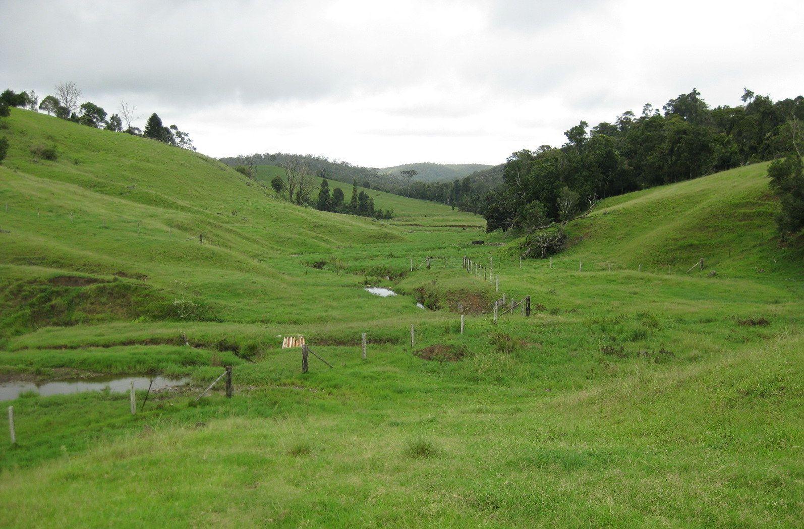 402 Eungella Dam Road, Eungella QLD 4757, Image 2